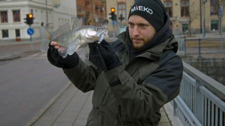 tommy_med_årets_första_gös
