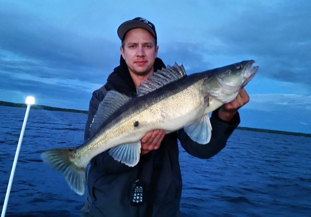 Live frn storsjns nattfiske med hokkalaimi som drar pb phellip
