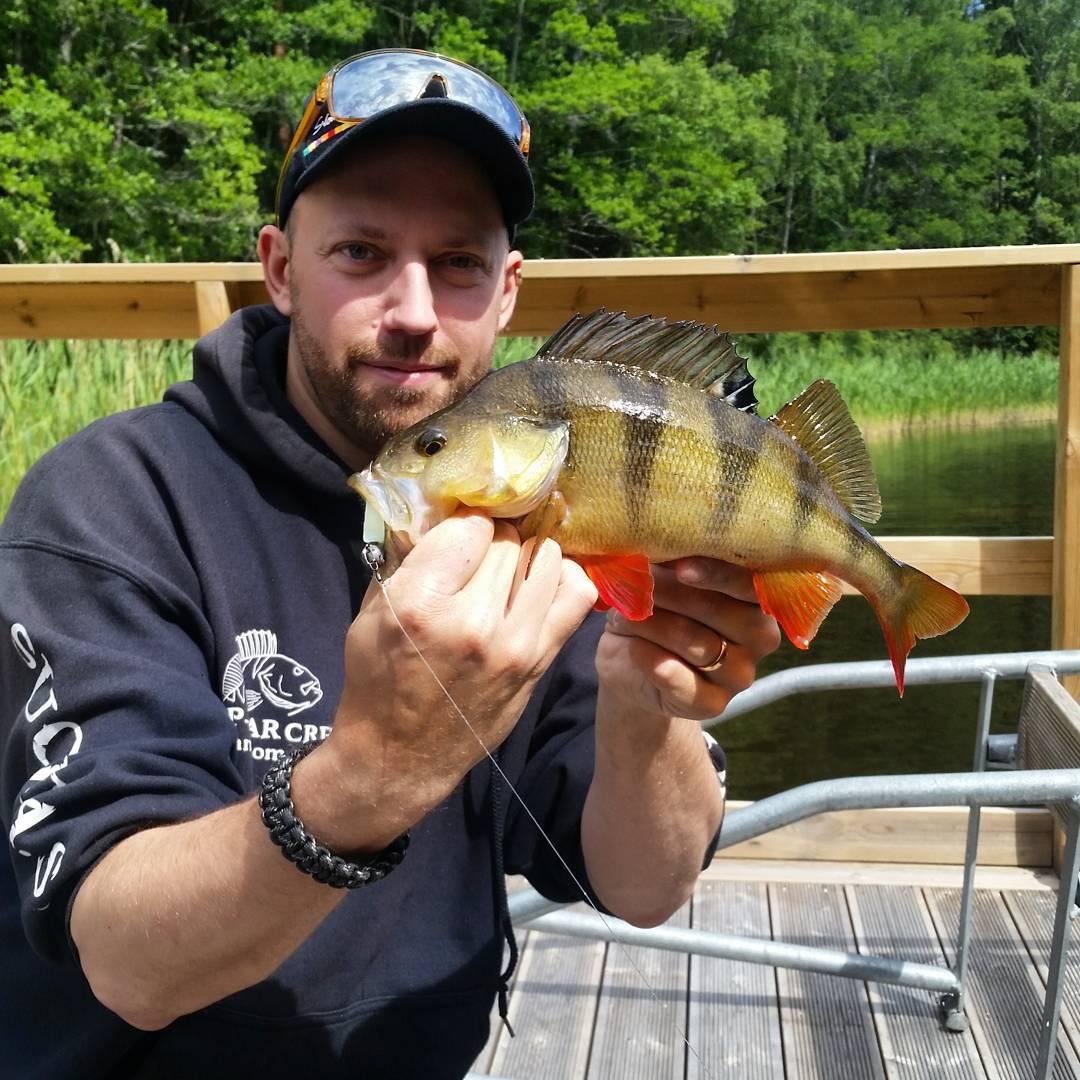 Andra fisken halvkilos p jiglure jl2 yellow fellow! Ja dehellip